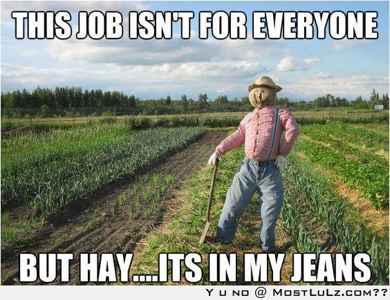 Hay in my Jeans LuLZ