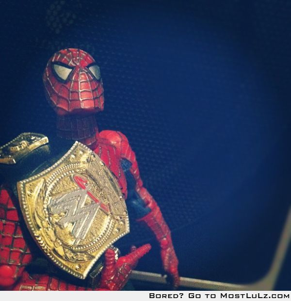 Spiderman Winning LuLz