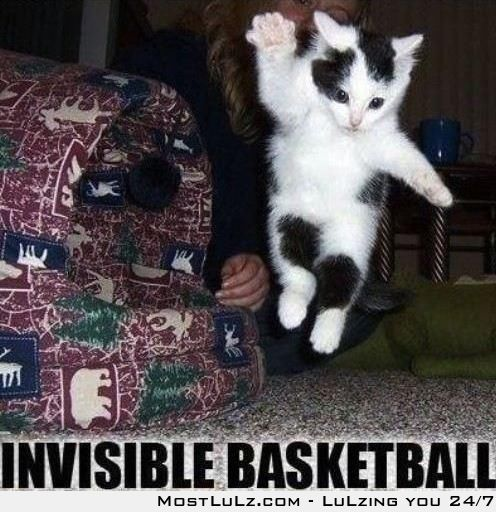 Invisible Basketball LuLz