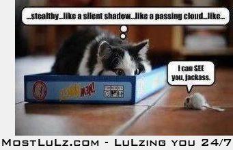 Sneaky Fail LuLz