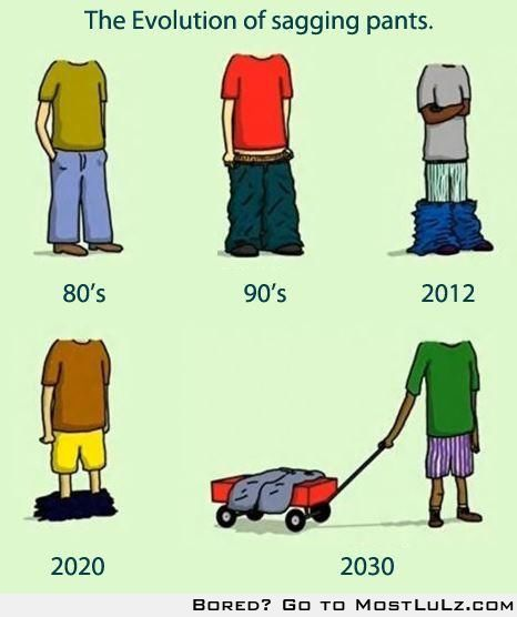Evolution of the Pant sag LuLz