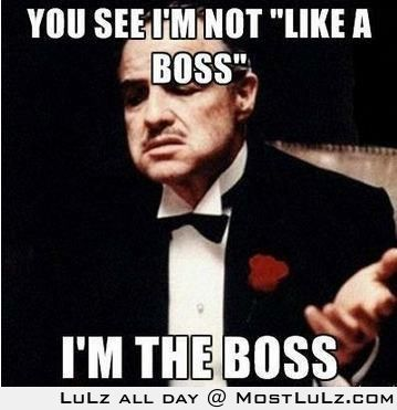 I AM THE BOSS LuLz