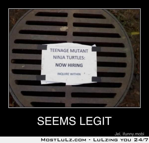 Ninja turtle's are hiring LuLz