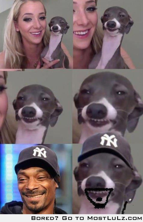 Snoop's cousin LuLz