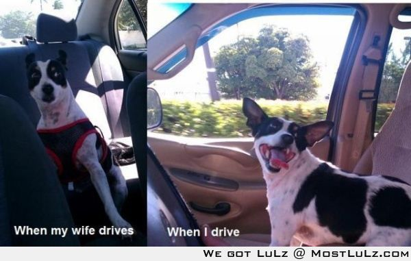 When my wife drives LuLz