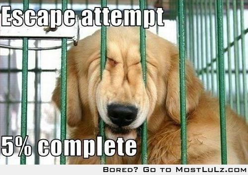 Escape! LuLz