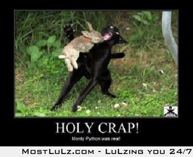 Monty Python was real!!! LuLz