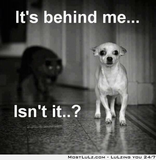 Sadly, it is behind you...RUNNNN LuLz