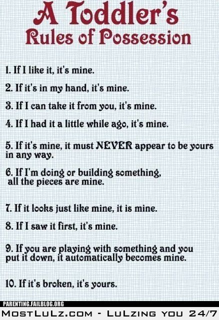 Toddler's Rules of Possession LuLz