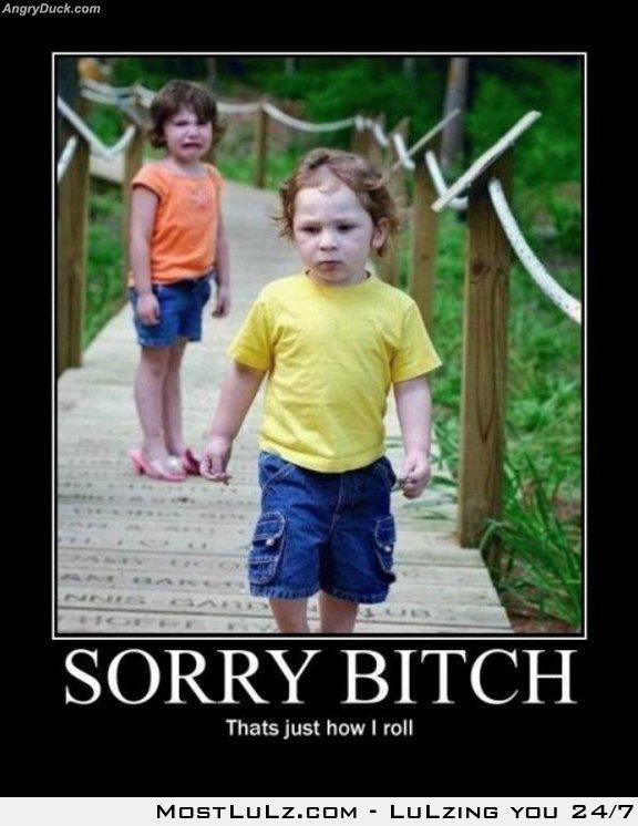 Sorry Bitch LuLz