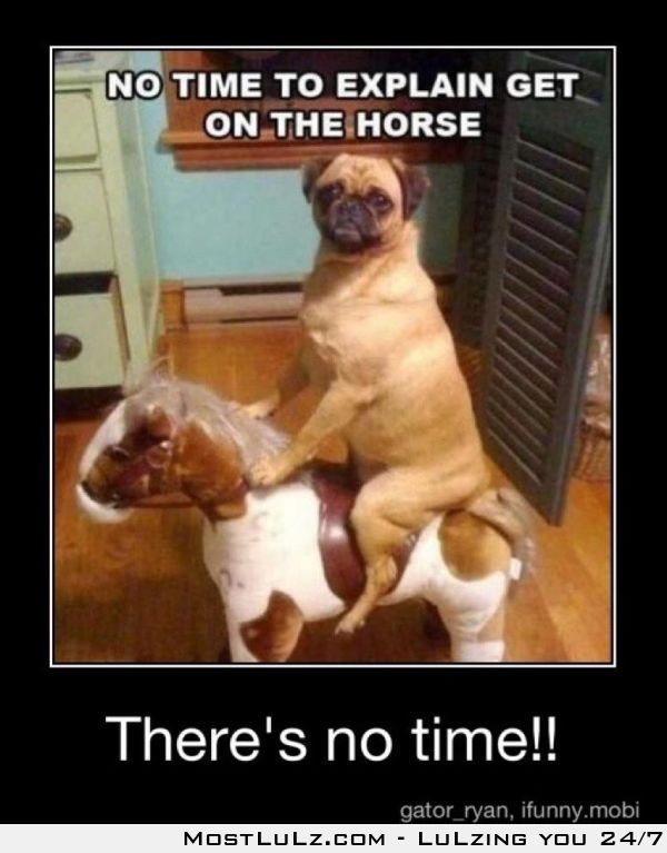Get on the horse! LuLz
