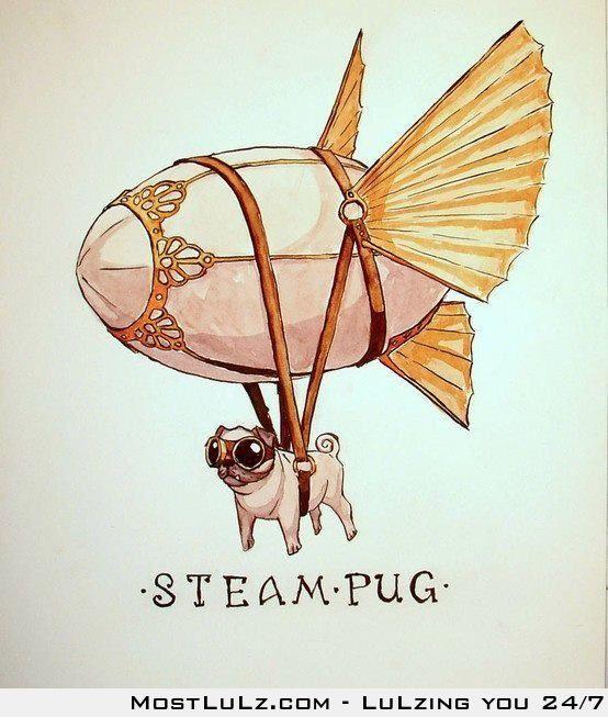 Steam Pug FTW