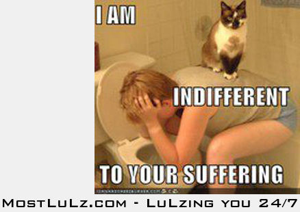 I am indifferent LuLz