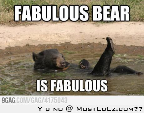 Fabulous Bear