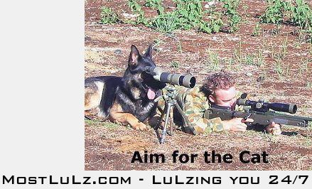 Aim for the cat LuLz
