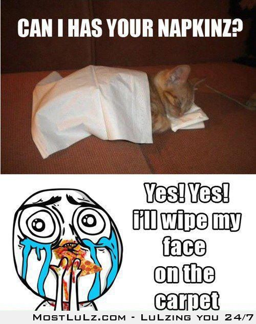 Yes yes you can haz my napkin LuLz