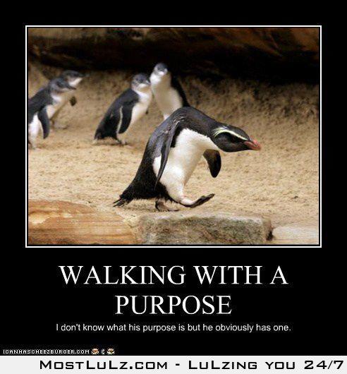 Purpose LuLz
