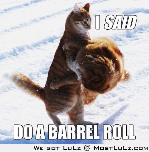 do a barrel roll LuLz