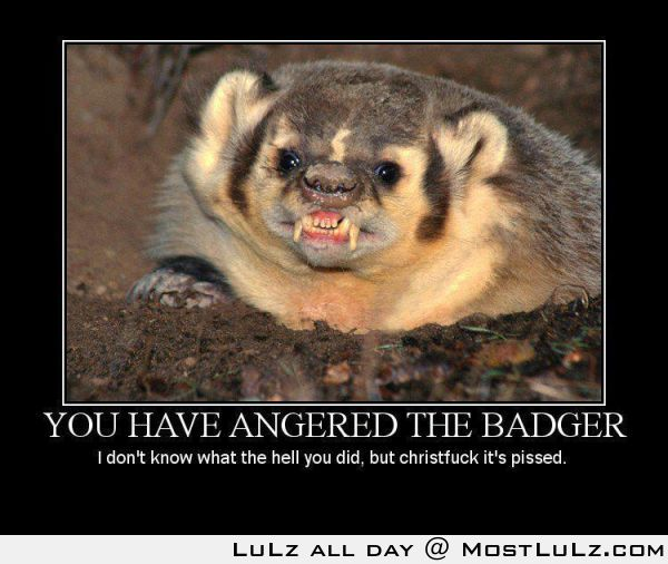 Don't anger the honey badger LuLz