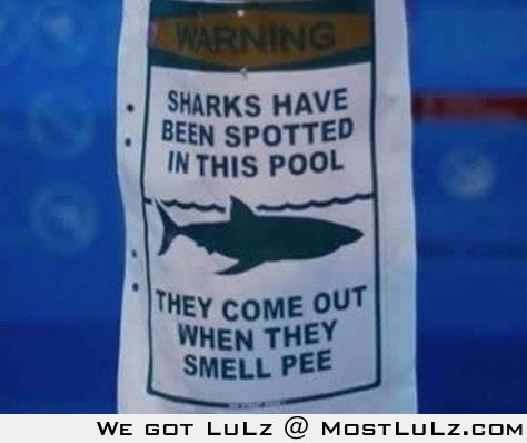 Don't pee in the pool!! LuLz