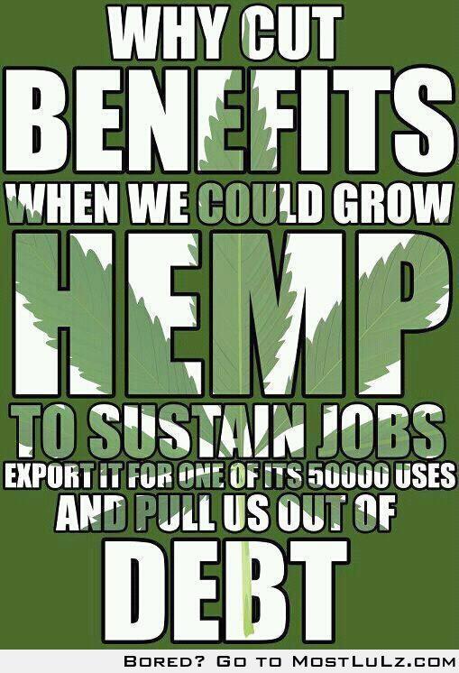 Grow hemp LuLz