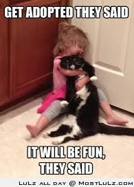 Cat tormented by child
