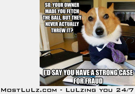 Can't beat a dog lawyer.