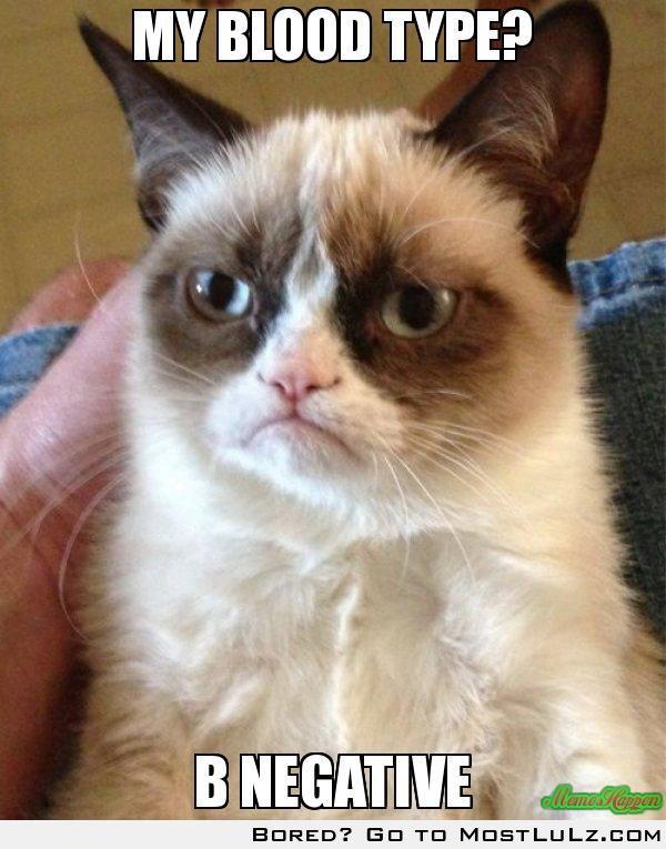 My Blood Type? Grumpy Cat