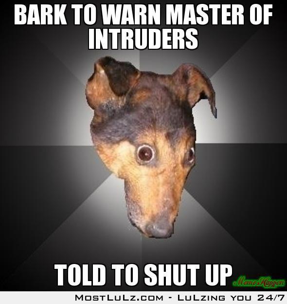 Bark to Warn Master