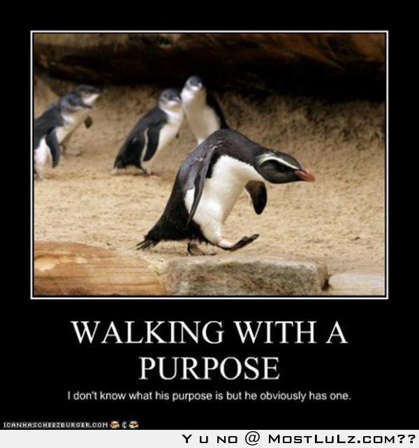 A Penguin – With A Purpose.