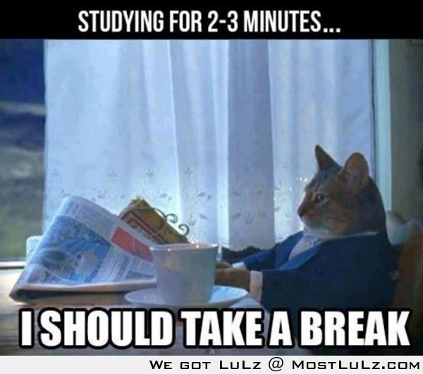 Studying for 2-3 minutes
