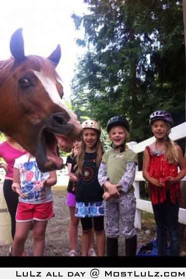 Horse PhootBomb
