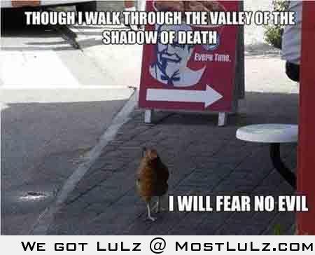 Brave Chicken?
